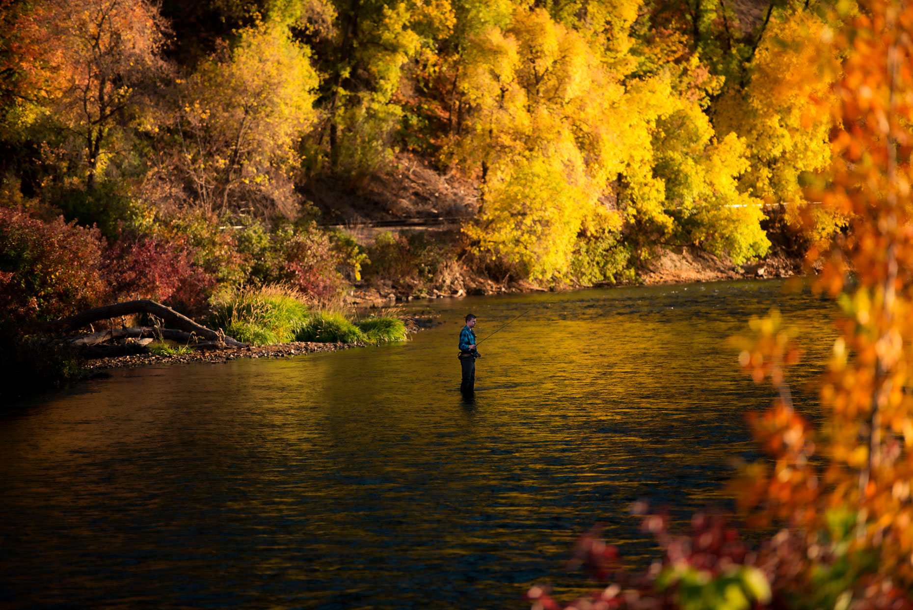 Provo-River-Fly-Fishing